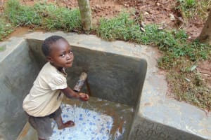 The Water Project: Shivembe Community, Murumbi Spring -  Camera Shy