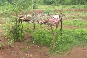 The Water Project: Kathamba ngii Community B -  Dishrack