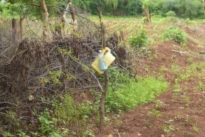 The Water Project: Kathamba ngii Community B -  Tippy Tap