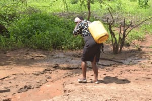 The Water Project: Syonzale Community -  Carrying Water