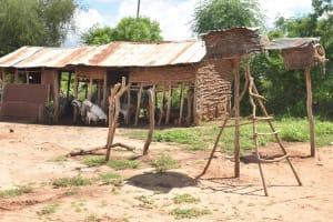 The Water Project: Syonzale Community -  Cattle Pen