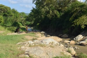 The Water Project: Yumbani Community A -  River