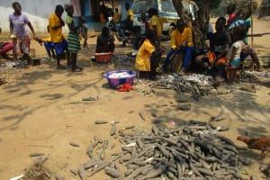 The Water Project: Lokomasama, Gbonkogbonko Village -  Children Peeling Cassava Root