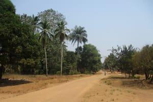 The Water Project: Lokomasama, Gbonkogbonko Village -  Landscape