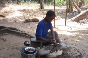 The Water Project: Lokomasama, Gbonkogbonko Village -  Small Boy Breaking Palm Karnel