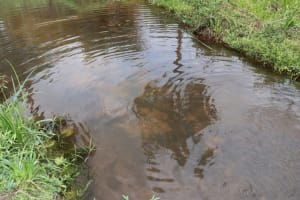 The Water Project: Kamasondo, Robombeh Village, Next to Mosque -  Alternate Water Source