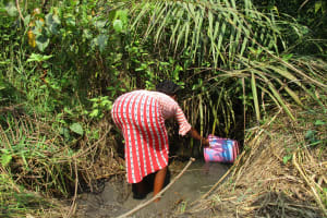 The Water Project: Lokomasama, Satamodia Village -  Woman Collecting Water