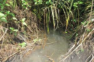 The Water Project: Lokomasama, Satamodia Village -  Alternate Water Source