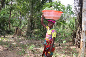 The Water Project: Polloth Village, Loco Area -  Woman Carrying Mangoes