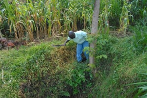The Water Project: Kalenda B Community, Lumbasi Spring -  Site Clearance