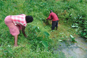 The Water Project: Maondo Community, Ambundo Spring -  Site Clearance