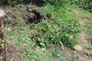 The Water Project: Mukangu Community, Metah Spring -  Site Clearance