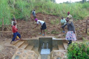 The Water Project: Musiachi Community, Mutuli Spring -  Grass Planting