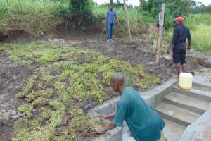 The Water Project: Bukhaywa Community, Shidero Spring -  Grass Planting