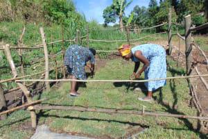 The Water Project: Emurumba Community, Makokha Spring -  Grass Planting
