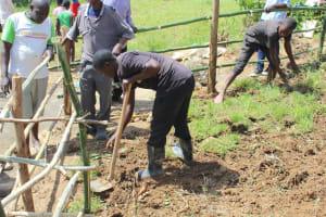 The Water Project: Tumaini Community, Ndombi Spring -  Grass Planting