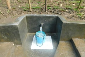 The Water Project: Rosterman Community, Lishenga Spring -  Clean Water Flows