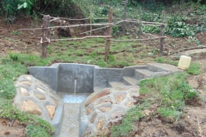 The Water Project: Mukangu Community, Metah Spring -  Completed Metah Spring