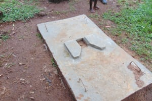 The Water Project: Imusutsu Community, Ikosangwa Spring -  Completed Sanitation Platform