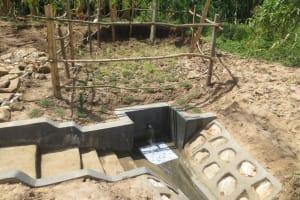 The Water Project: Kalenda B Community, Lumbasi Spring -  Clean Water Flows At Lumbasi Spring