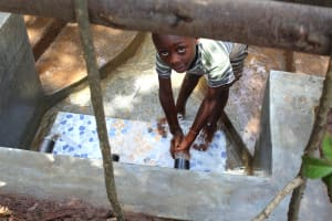 The Water Project: Namarambi Community, Iddi Spring -  Peeping From Inside The Fence