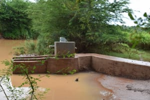 The Water Project: Ngitini Community E -  Completed Well