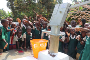 The Water Project: Lungi, Mamankie, DEC Mamankie Primary School -  Students At The Well Celebration