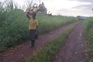 The Water Project: Kaitabahuma I Community -  Carrying Firewood