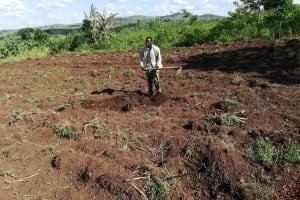 The Water Project: Kaitabahuma I Community -  Preparing Farm For Sugarcane