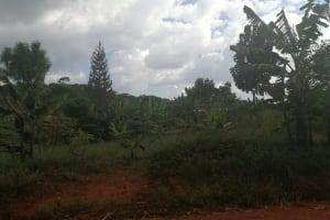 The Water Project: Kabo Village -  Farmland
