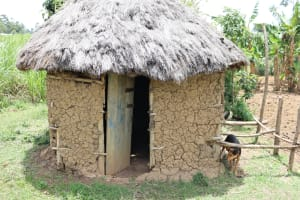 The Water Project: Mukhuyu Community, Chisombe Spring -  Calves House