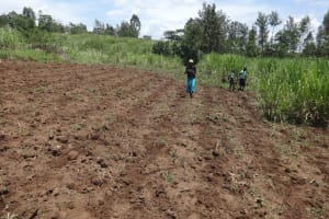 The Water Project: Mahira Community, Jairus Mwera Spring -  Planting Season