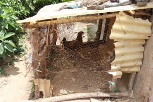 The Water Project: Mukhuyu Community, Chisombe Spring -  Poultry House