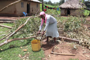 The Water Project: Mahira Community, Wora Spring -  Collecting Cow Dung