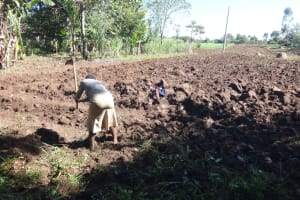 The Water Project: Mahira Community, Kusimba Spring -  A Woman Prepares Her Land For Planting