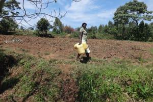 The Water Project: Mahira Community, Jairus Mwera Spring -  Walking To The Spring