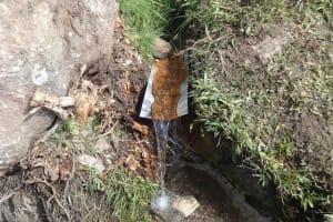 The Water Project: Mahira Community, Kusimba Spring -  Collection Point At Kusimba Spring