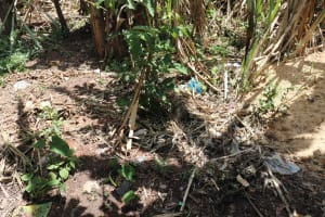 The Water Project: Mahira Community, Litinyi Spring -  Garbage Disposal To The Farm
