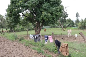 The Water Project: Mukhuyu Community, Chisombe Spring -  Clothes Drying On A Fence