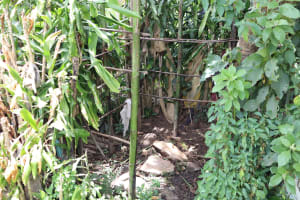 The Water Project: Mukhuyu Community, Chisombe Spring -  Bathing Shelter