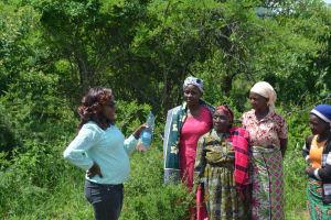 The Water Project: Kasekini Community A -  Hygiene And Sanitation Training