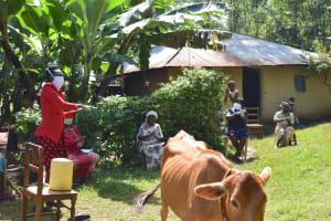 The Water Project: Ibinzo Community, Lucia Spring -  Handwashing Demonstration
