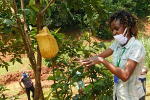 The Water Project: Shikhombero Community, Atondola Spring -  Scrub The Back Of The Hands