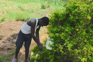 The Water Project: Eshiakhulo Community, Asman Sumba Spring -  Handwashing At Asman Sumba Spring