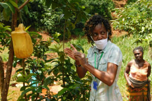 The Water Project: Shikhombero Community, Atondola Spring -  Be Sure To Scrub Your Palms