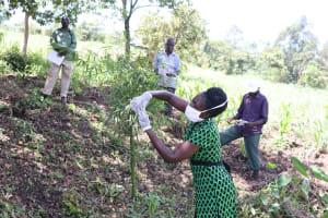 The Water Project: Ewamakhumbi Community, Yanga Spring -  Homemade Mask Tutorial