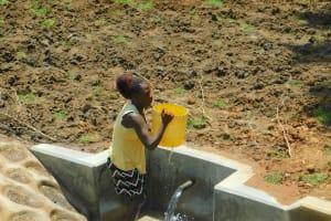 The Water Project: Shikangania Community, Abungana Spring -  Mounting Bucket On Head