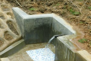 The Water Project: Shikangania Community, Abungana Spring -  Clean Water Flows