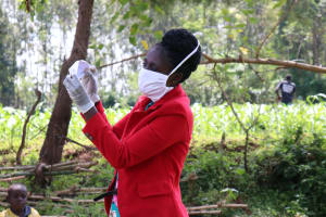 The Water Project: Asimuli Community, John Omusembi Spring -  The Final Sample Mask Product