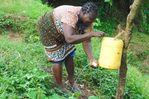The Water Project: Mungakha Community, Nyanje Spring -  Handwashing With Soap